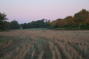 Van buren county Iowa. Picture of land for sale. 355 acres.
