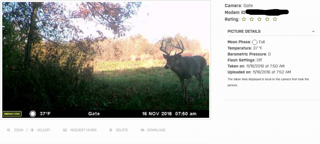 Picture of an Iowa whitetail buck taken with the aid of the Moultrie wireless field modem.
