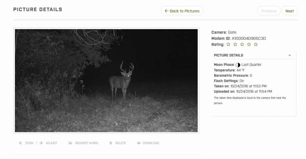 Image of Iowa whitetail buck taken with the Moultrie wireless modem.